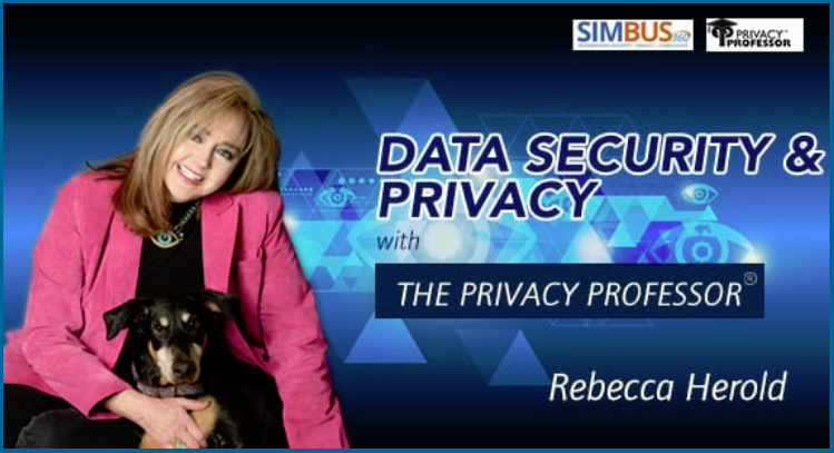 Data Security and Privacy with the Privacy Professor